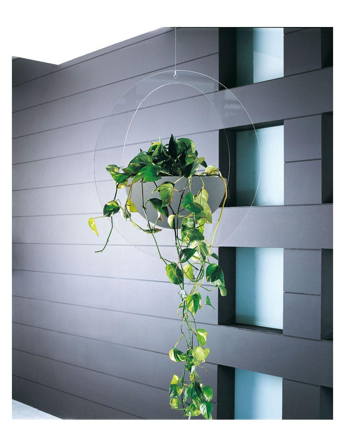 Fioriera da interno design in plexiglass erbavoglio - Fioriera da interno ...