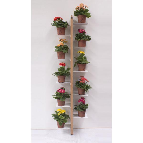 Portavasi da parete zia flora porta piante per interni - Vasi di arredamento da interni ...