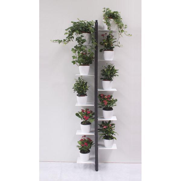 Portavasi da parete zia flora porta piante per interni - Porta piante da esterno ...