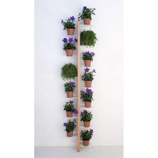 Portavasi da parete Zia Flora | Porta piante per interni ...