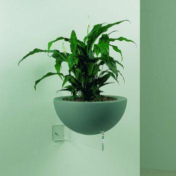 Erbavoglio fioriera da parete in plexiglass design moderno