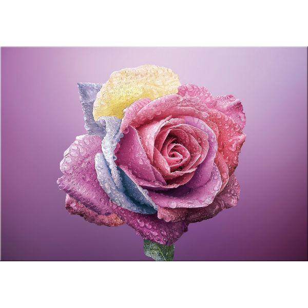 Quadro floreale su tela per arredamento Color Rose | Quadri su tela