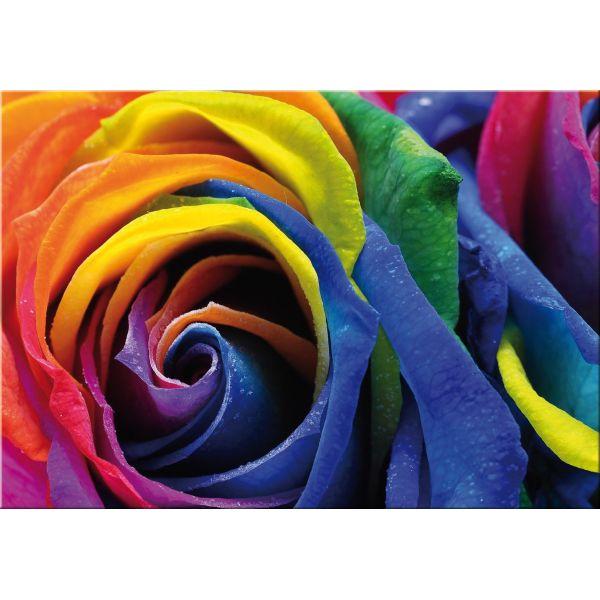 Stampa su tela con immagini floreali Multi Rose | Quadri su tela