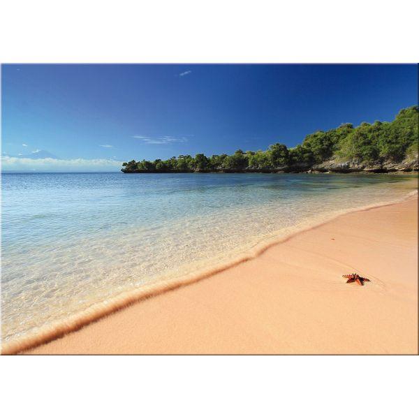 Stampa su tela quadro paesaggio mare caraibico The Beach